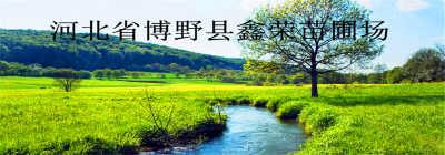 博野县鑫荣苗圃场
