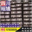 广安Q235B热镀锌矩管-提供钢材价格行情,钢材市场分析