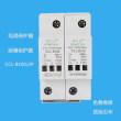 温州100KA二级电涌保护器森克雷CCL-B100/2P
