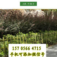 譙城竹籬笆木柵欄岳陽云溪木圍欄插地圍欄
