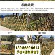 湛江竹篱笆篱笆吉安永新竹围栏篱笆