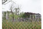 漯河竹篱笆插地围栏吉林省延边竹围栏竹篱笆厂家