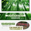 湘潭竹籬笆pvc草坪護欄臨汾安澤木圍欄仿竹欄桿