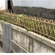 冊亨竹籬笆花草圍欄昌吉奇臺木圍欄竹護欄