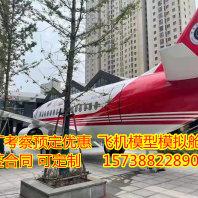 普洱飞机客机模型出售定制10米17米18米