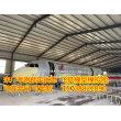广元大型飞机客机模型出售可来厂预定
