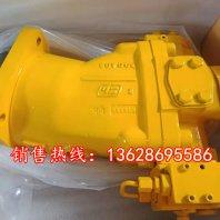 H2V55SL2R,H2V55SF2R液压泵马达萨姆价格,措美县