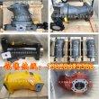 北京華德液壓泵貴州力源液壓泵A7V58EL1LZF00仁壽