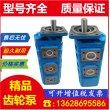 盘龙成工装载机齿轮泵P5100-F100NP3676/P124-G16Y03G齿轮泵