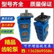 龙海P5100-F63NJ36791/F50NIB/F40TIBG齿轮泵