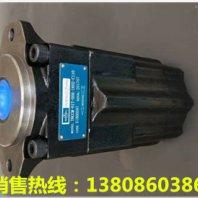 鋁合金齒輪油泵馬達L2F80R6.1Z5