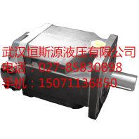 液壓配件 A15VSO175DRDGA0V/10MRVE4B21EB2S40-0