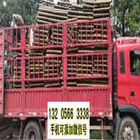 欢迎##赤峰林西防腐护栏|工艺精湛