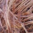 四芯電纜回收廢舊電纜白山回收廢舊電纜每米多少