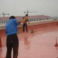 防水涂料保护